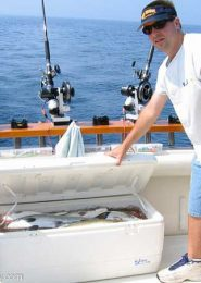 fish-338